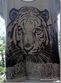 tigre brechocamarim-002