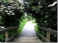 Belmont Park walk