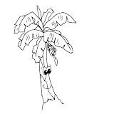 plant-021.jpg