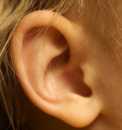 ear by travis isaacs