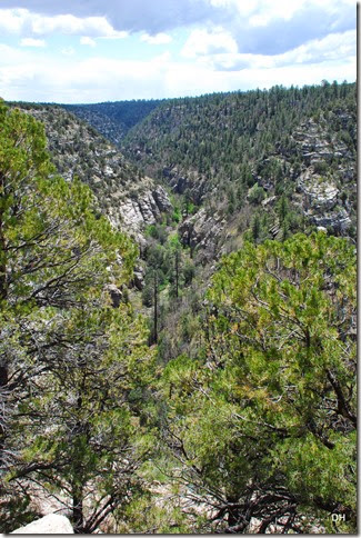 05-08-14 C Walnut Canyon NM (86)