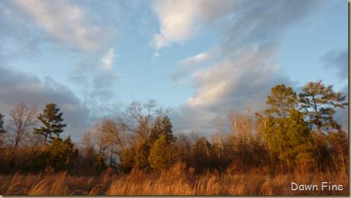 evening light in carthage_001