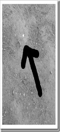 20130401_122738_thumb[3]