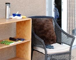 DSC_0583 balcony birding-kab