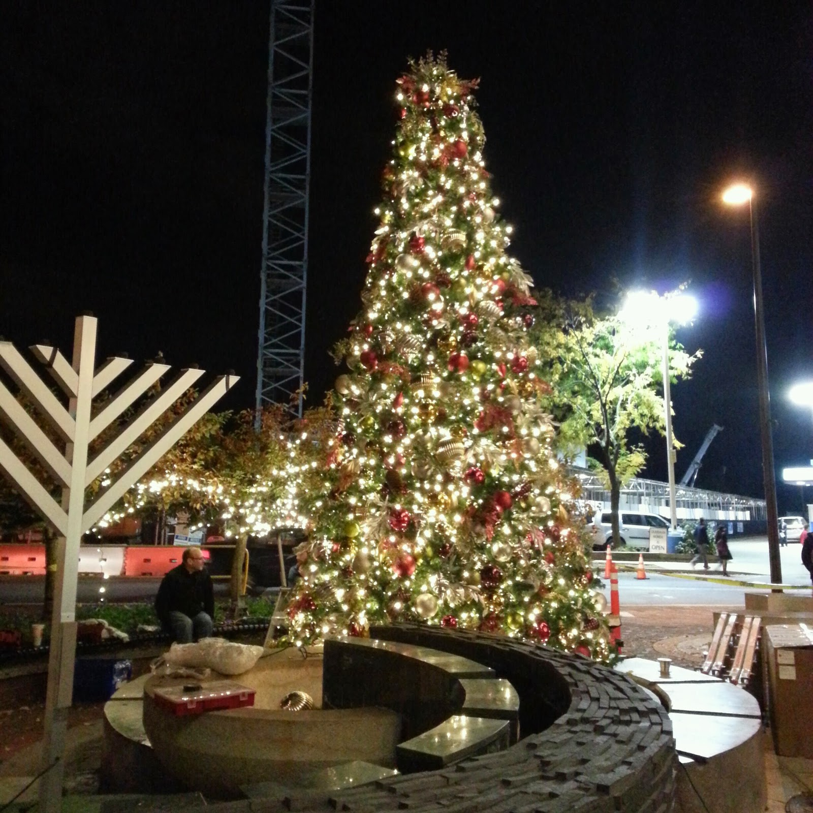 Christmas Decorations Ideas For Hotels: Robert Dyer @ Bethesda Row: BETHESDA ROW CHRISTMAS TREES