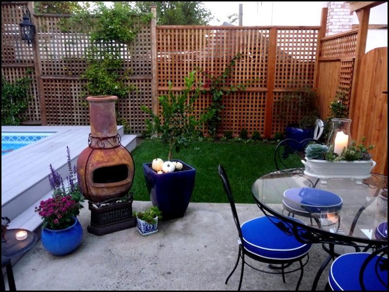 Backyard 014 (800x600)
