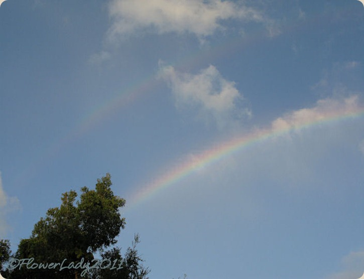 09-28-rainbow3