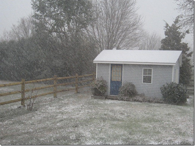 Snow 02 (4)