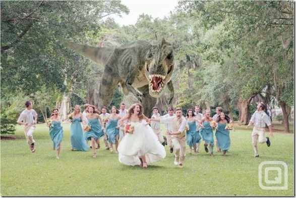 funny-wedding-photos-45