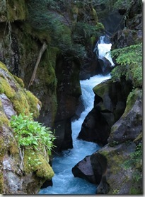 cf_gnp_waterfall_and_canyon_TrailOfTheCedars2_thumb[1]
