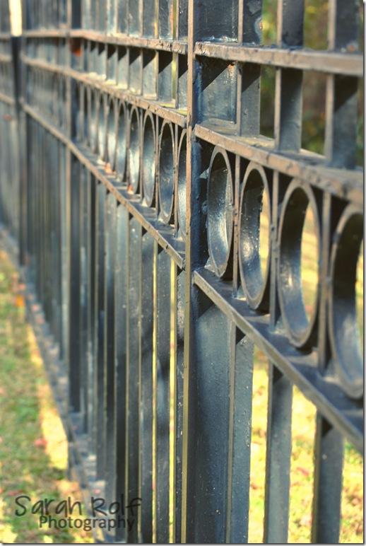 black-fence