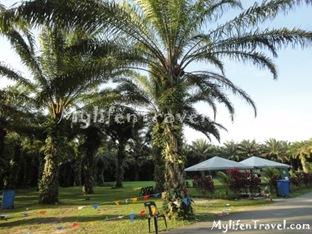 Taman Rekreasi air panas 31