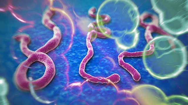 ebola002