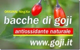 Logo-Goji-Shop-Lindeberg