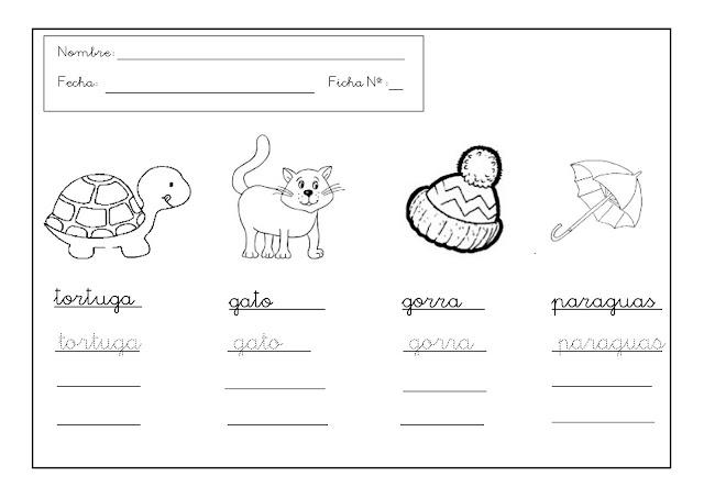 Combinaciones Entre Consonantes C,D,G,K,Ñ,Q,W,Y,Z - Lessons - Tes Teach