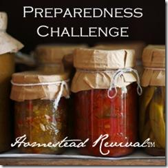 Preparedness-Challenge-Button