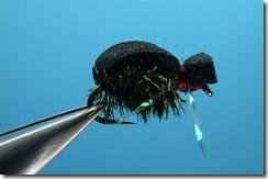black_beetle