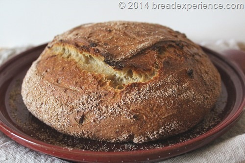Roasted Onion Spelt and Einkorn Levain