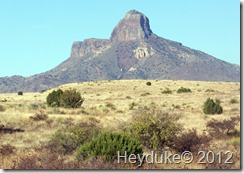 Alpine and Big bend TX 033