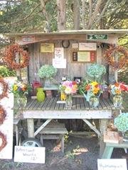 11.2011 flowers cart front dennis