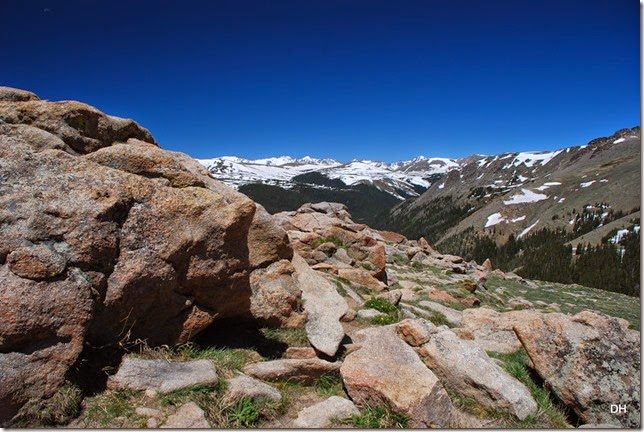 06-19-14 A Trail Ridge Road RMNP (141)