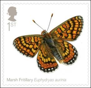marsh-fritallary_660
