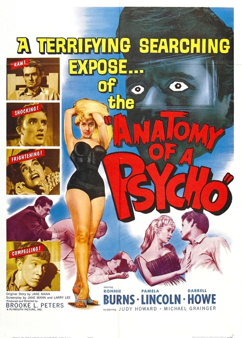 Anatomy Of Psycho 01