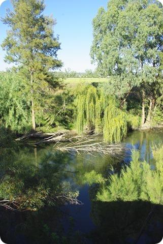 Peel River behind Austin Caravan Park