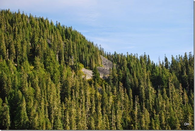 09-28-14 A Rainier NP (73)