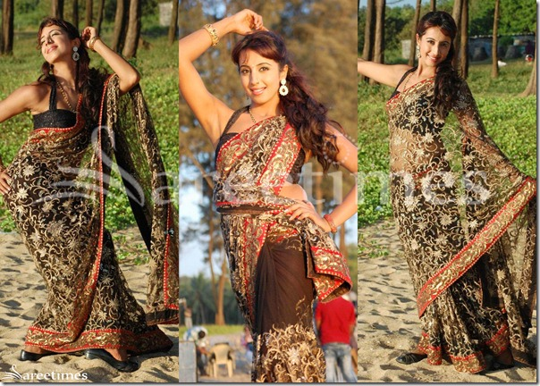 Sanjana_Embroidery_Saree
