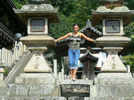 Nara: Daibatsu