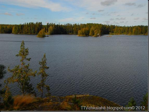 ötökät ikkunssa haukijärvi keloja 032