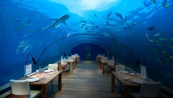 مطعم تحت الماء في المالديف