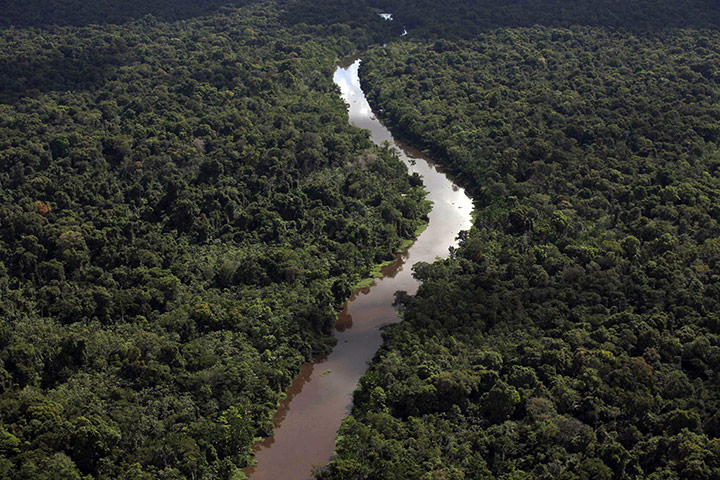 The Xingu River, where the Belo Monte dam is being built, is one of the largest rivers in the Amazon basin. Photograph: Karla Gachet/Greenpeace