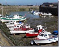 Sept 2013 Guernsey  (14)