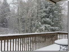 snow day 04