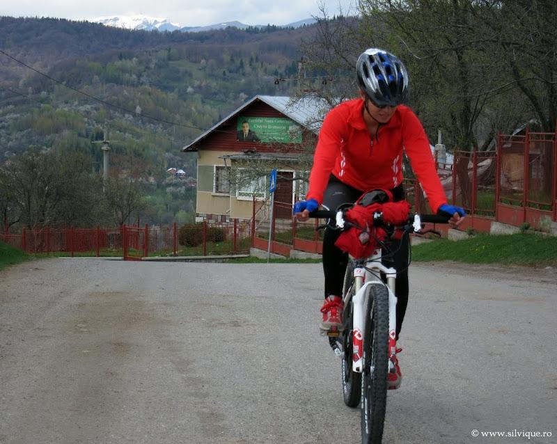 Bicicleta in zona Campina