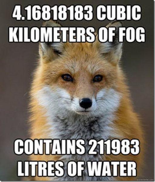 fox-facts-meme-10