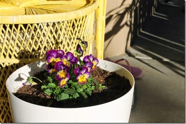 http://sewcooklaughlive.blogspot.com.au/