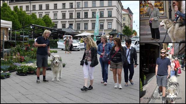Gustav handles the tourists