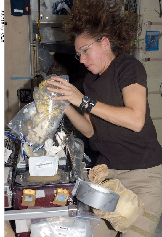 Sandra-Magnus-ISS-01
