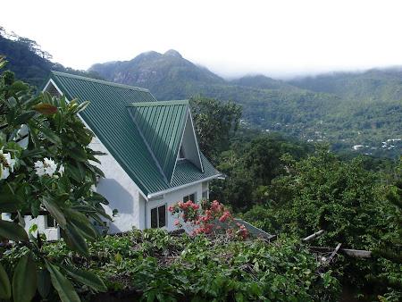 Cabanuta noastra Lemongrass Lodge