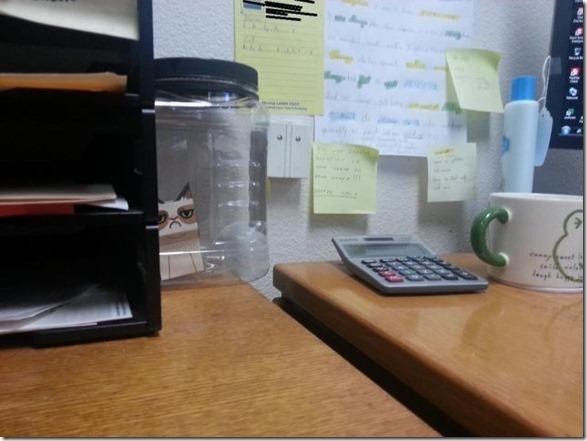 grumpy-cat-office-5