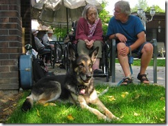 dog-visiting-nursing-home