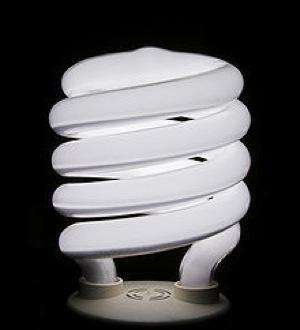 CFL Bulb.jpg