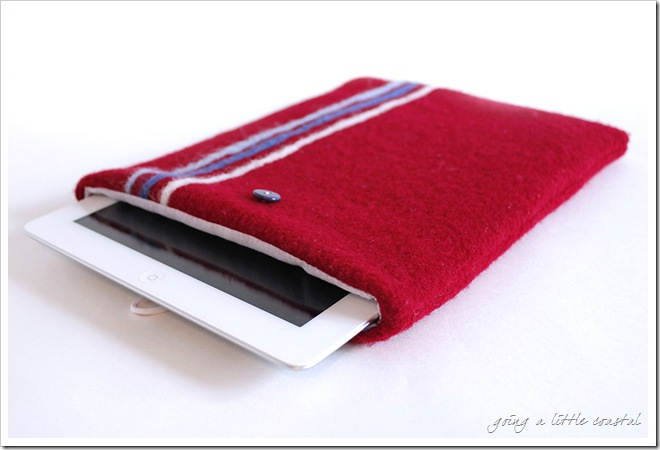 ipad felted cover_edited-1
