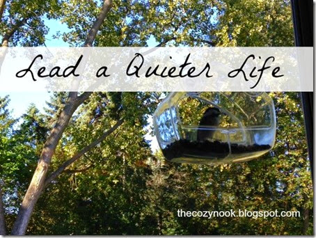 Lead a Quieter Life - The Cozy Nook