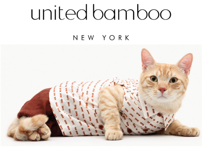 calendario-com-gatos-united-bamboo-1