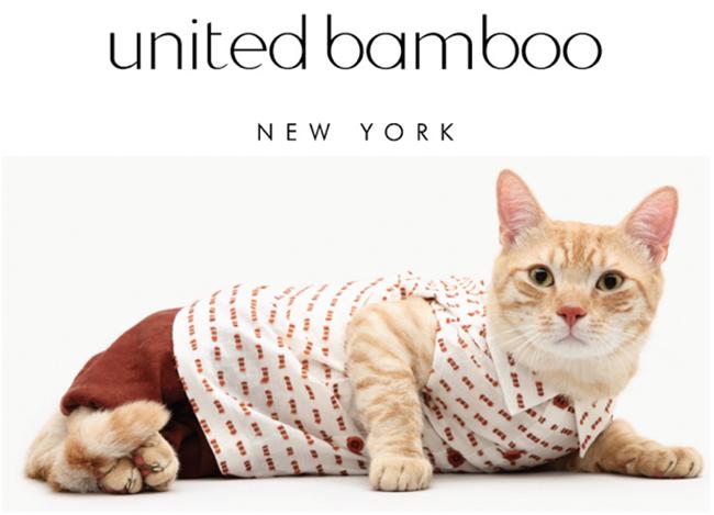 calendario-com-gatos-united-bamboo-1