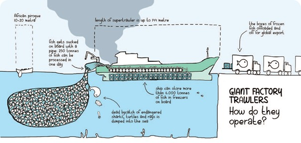 How_super_trawlers_work